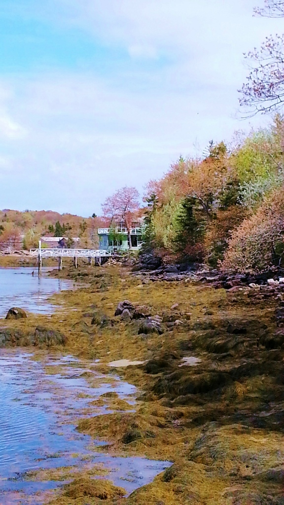 Beach Leading Up To Waterfront Cottage