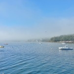 Bayville emerging from the fog