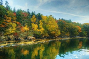 Jack Keegan's Fall color along the shoreline by Seanook