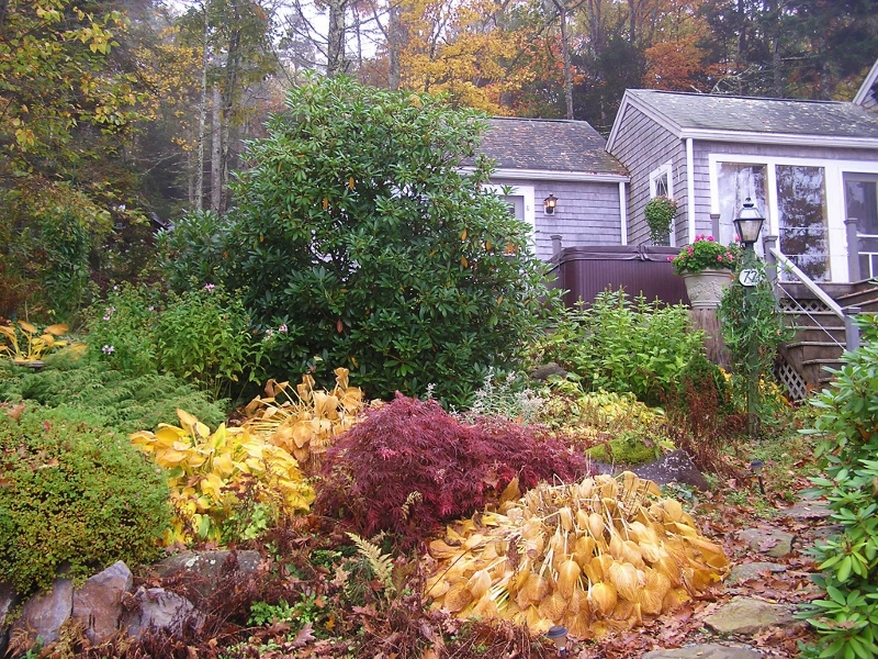 Paradise Cottage in the fall garden 10-20