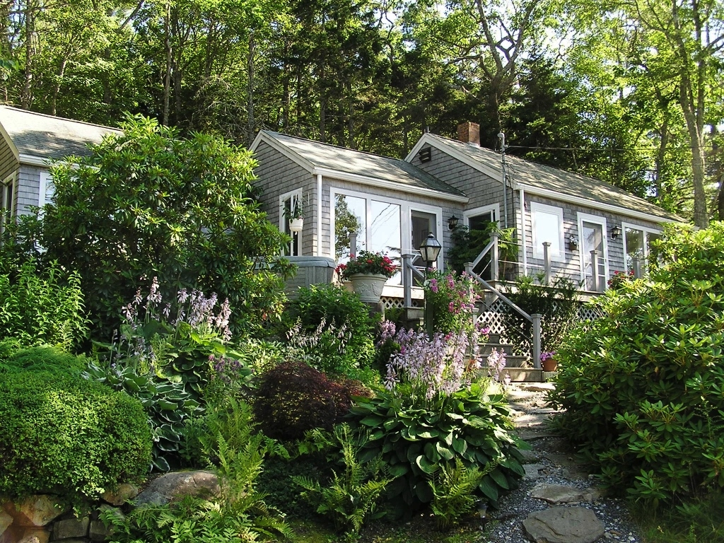 Gray Cottage in the Woods During the Summer