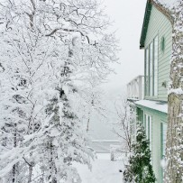 A (very) cool Yule A family finds its longed-for white Christmas in New England
