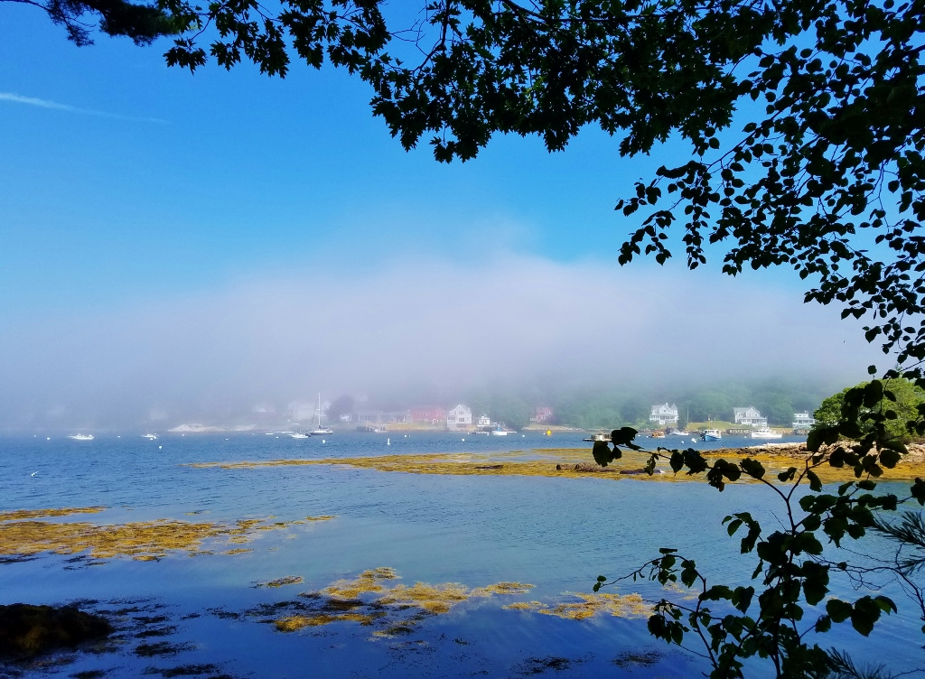Fog coming in over Murray Hill on Linekin Bay seen from the picnic area