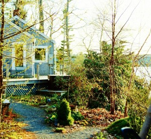 Early May at Paradise Cottage