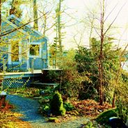 Paradise Cottage in Summer